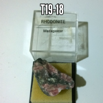 Rhodonite natural Crystal specimens in case